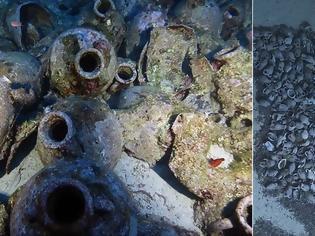 Φωτογραφία για Κεφαλονιά: Εντυπωσιακές φωτογραφίες από ρωμαϊκό ναυάγιο με 6.000 αμφορείς