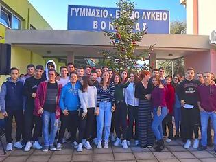 Φωτογραφία για Στόλισαν το Χριστουγεννιάτικο δέντρο στο Γυμνάσιο και Λύκειο ΒΟΝΙΤΣΑΣ - [φωτο]