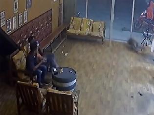 Φωτογραφία για Αγριογούρουνο μπουκάρει σε κουρείο και σπάει την τζαμαρία για να βγει