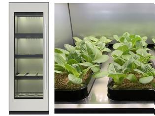 Φωτογραφία για Συσκευή για καλλιέργεια λαχανικών μέσα στο σπίτι σας