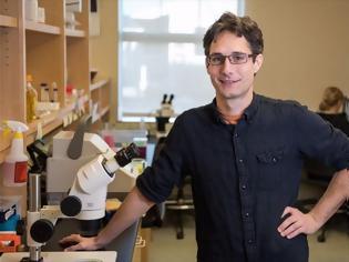 Φωτογραφία για Πιθανό ελιξήριο της αθανασίας: Βιολόγοι επέκτειναν τη διάρκεια ζωής σκουληκιών κατά 500%