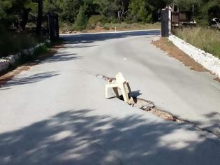Φωτογραφία για Απίστευτα μέτρα προστασίας σε δρόμο στην Καλλιθέα - φώτος