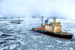 Ralph Lauren, Puma και άλλοι κολοσσοί «φεύγουν» από την Αρκτική