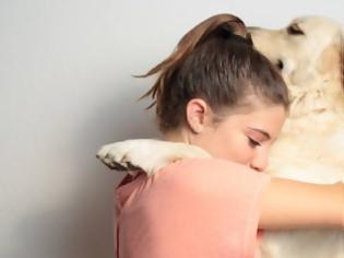 Φωτογραφία για Ζώα συναισθηματικής υποστήριξης: Οι πολύτιμοι σύμμαχοί μας στην αντιμετώπιση του άγχους