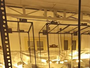 Φωτογραφία για «Λουκέτο» σε τρία «εργοστάσια» καλλιέργειας κάνναβης στην Αττική