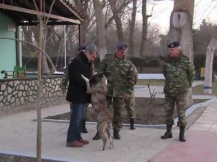 Φωτογραφία για Ο Τουρκικός σκύλος που ζήτησε...άσυλο στο φυλάκιο Πυθίου
