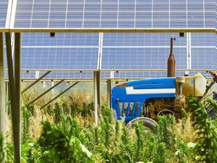 Φωτογραφία για Τα φωτοβολταϊκά μειώνουν το κόστος της αγροτικής παραγωγής
