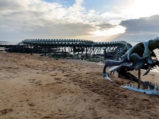 Φωτογραφία για Μυστήριο: Τεράστιος σκελετός βρέθηκε σε παραλία μετά την κακοκαιρία Κιάρα