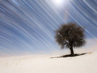 Φωτογραφία για Star Trails of the North and South