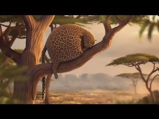Φωτογραφία για Έτσι θα ήταν τα άγρια ζώα εάν έτρωγαν… fast food - Ξεκαρδιστικό Βίντεο
