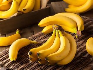 Φωτογραφία για Ποιος είπε ότι οι μπανάνες είναι κίτρινες; Υπάρχουν και μπλε μπανάνες