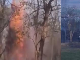 Φωτογραφία για Εβρος: Μετανάστες έβαλαν φωτιά σε δέντρο για να το ρίξουν στον φράχτη (video)