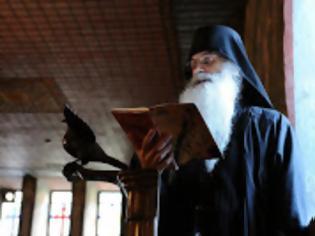 Φωτογραφία για 13350 - Μοναχός Παύλος Χιλιανδαρινός (1958 - 21 Μαρτίου 2013)