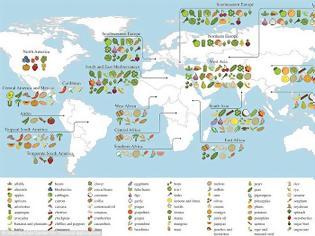 Φωτογραφία για Ποιες χώρες δημιουργούν απόθεμα τροφίμων με απαγόρευση εξαγωγών