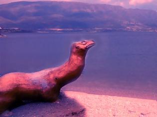 Φωτογραφία για ΕΚΤΑΚΤΟ: Θαλάσσιο «Τέρας» εμφανίστηκε στη λίμνη Αμβρακία !!