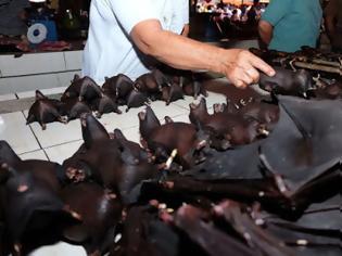 Φωτογραφία για Δεν βάζουν μυαλό: Συνεχίζουν να τρώνε νυχτερίδες, σαύρες, γάτες και σκυλιά