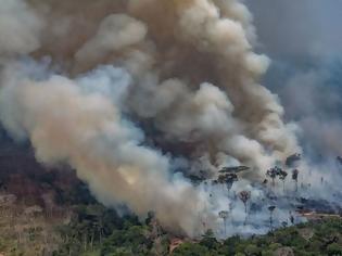 Φωτογραφία για Αμαζόνιος - Προειδοποίηση: Η παρέμβαση στο δάσος ίσως προκαλέσει νόσο που θυμίζει κορωνοϊό