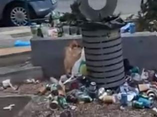 Φωτογραφία για Ποιοι έκαναν σκουπιδότοπο την πλατεία Βαρνάβα