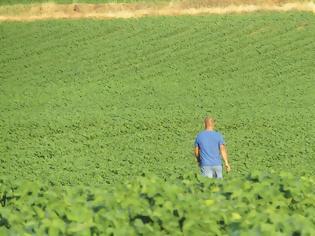 Φωτογραφία για Κίνητρα σε συνταξιούχους και ανέργους για απασχόληση στα χωράφια