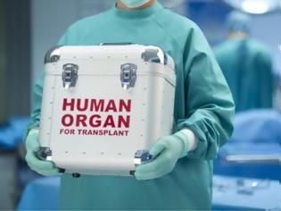 Φωτογραφία για «Δώρα ζωής» έλαβαν 26 συνάνθρωποι μας τον Μάιο από 7 δότες οργάνων