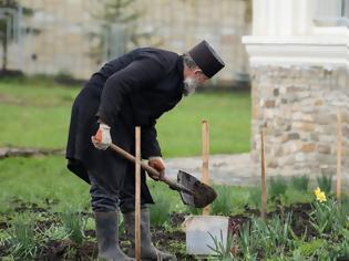 Φωτογραφία για Η ομορφιά που χαρίζει στην ψυχή η καλλιέργεια ενός κήπου