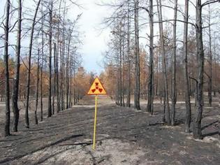 Φωτογραφία για Υψηλά επίπεδα ραδιενέργειας ανιχνεύτηκαν στην Σουηδία