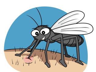 Φωτογραφία για Πώς να αποφύγετε τα τσιμπήματα από τα κουνούπια