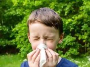 Φωτογραφία για Αλλεργική Ρινίτιδα στα Παιδιά: Αντιμετώπιση με Φυσικό Τρόπο