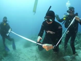Φωτογραφία για Αλόννησος: Εγκαινιάστηκε το πρώτο υποβρύχιο μουσείο της Ελλάδας - Ο «Παρθενώνας των ναυαγίων»