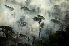 Καίγεται και φέτος η Αμαζονία. 6800 πυρκαγιές μόνο τον Ιούλιο
