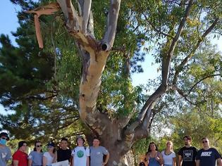 Φωτογραφία για Generation Europe ECO, ένα εφηβικό Summer Camp για την περιβαλλοντική ευαισθητοποίηση στην Κέρκυρα. -Συμμετοχή ομάδας εφήβων από τη Βόνιτσα.