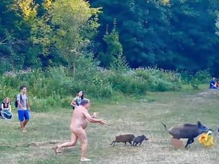 Φωτογραφία για Γερμανία: Viral οι φωτογραφίες με τον γυμνό άνδρα που κυνηγά αγριογούρουνο