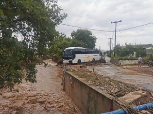 Φωτογραφία για Βιβλική καταστροφή στα Ψαχνά...  απο Psaxna.gr
