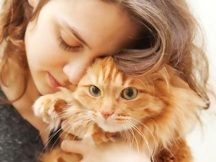 Φωτογραφία για Οι γάτες είναι καταπληκτικοί φίλοι, σύντροφοι και πολύ καλοί θεραπευτές