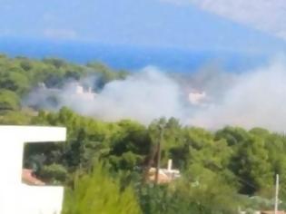 Φωτογραφία για Φωτιά στην Αρτέμιδα-Ραφήνα ΤΩΡΑ