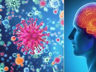 Φωτογραφία για Μηνιγγίτιδα Συμπτώματα και σημάδια που πρέπει να γνωρίζετε. Ποιοι κάνουν το εμβόλιο