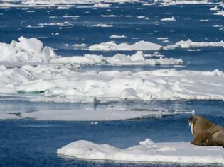 Φωτογραφία για Κλιματική αλλαγή: Φέτος έλιωσε η μεγαλύτερη ποσότητα πάγου της Αρκτικής από το 1979
