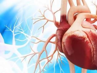 Φωτογραφία για ΑΠΘ : Ψηφιακές εφαρμογές και τεχνητή νοημοσύνη στην υπηρεσία της πρόβλεψης και διαχείρισης καρδιακών παθήσεων