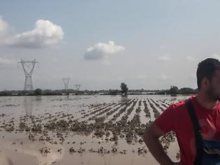Φωτογραφία για Κακοκαιρία Ιανός: «Βύθισε» πάνω από 21.000 στρέμματα στον Θεσσαλικό κάμπο