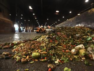 Φωτογραφία για WWF Ελλάς: στην Ευρώπη 88 εκατομμύρια τόνοι τροφίμων ετησίως καταλήγουν στα σκουπίδια
