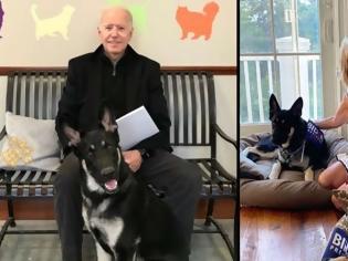 Φωτογραφία για Επιστρέφουν τα κατοικίδια στον Λευκό Οίκο - Δείτε τα δύο σκυλιά της οικογένειας Μπάιντεν
