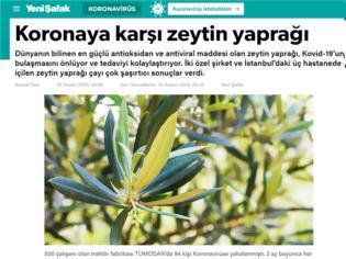 Φωτογραφία για Τουρκία: «Θεραπεύουν» τον κορωνοϊό με... τσάι από φύλλα ελιάς