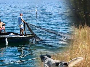 Φωτογραφία για Ψάρεμα, κυνήγι: Πότε θα ληφθούν οι αποφάσεις. Τι ισχύει για πρακτορεία ΟΠΑΠ