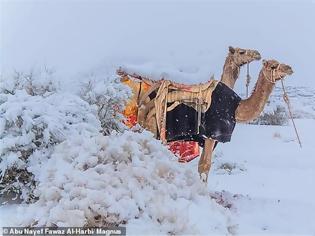 Φωτογραφία για BINTEO.Χιόνισε στη Σαχάρα - Στους -2 βαθμούς η θερμοκρασία στη Σαουδική Αραβία
