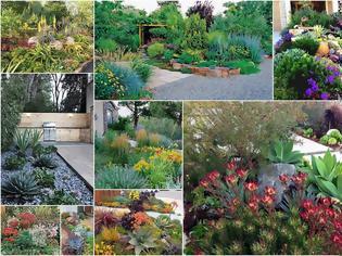 Φωτογραφία για Κήποι μειωμένης φροντίδας (άνυδροι) για εξοχικά σπίτια