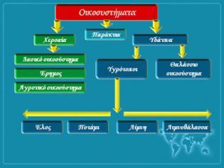 Φωτογραφία για Γεωγραφία Ε΄ τάξης: Κεφάλαιο 24ο Χαρακτηριστικά οικοσυστήματα της Ελλάδας
