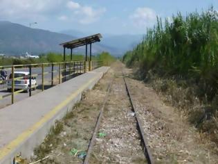 Φωτογραφία για Θα σωθεί η σιδηροδρομική γραμμή Καλαμάτα - Μεσσήνη;