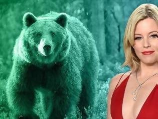 Φωτογραφία για «Cocaine Bear»: Η ταινία για τη ζωή της αρκούδας που πέθανε από υπερβολική δόση κοκαΐνης