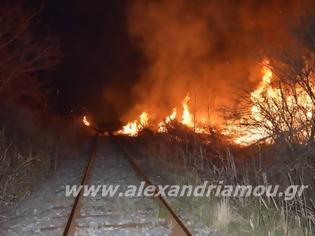 Φωτογραφία για Ακινητοποιήθηκε τρένο λόγω φωτιάς στον Σιδηροδρομικό Σταθμό Αλεξάνδρειας.