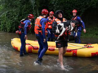 Φωτογραφία για Σίδνεϊ: Σπαρακτικό γαύγισμα από εγκλωβισμένα σκυλιά για να σωθούν από τις πλημμύρες